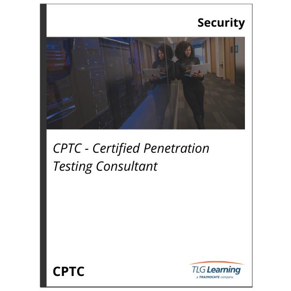 Penetration Testing Consultant
