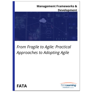 From Fragile to Agile: Practical Approaches to Adopting Agile